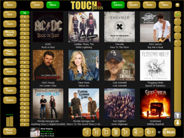 TouchJams Skin - Gold 1024 x 768